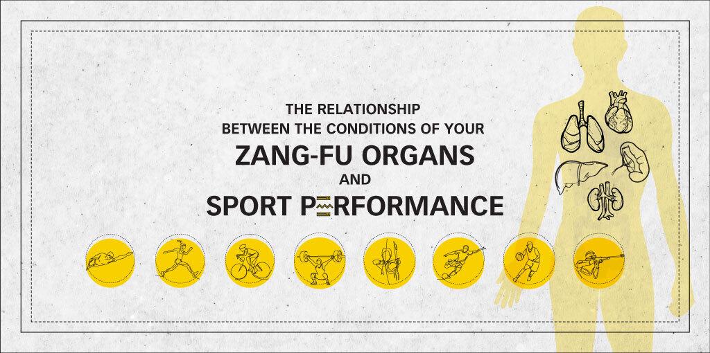 ZangFu-Sports-Performance-2020-Banner